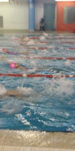 Centinaia di nuotatori di tutte l'età della Scuola Neysis di Cirò Marina per la gara di fine anno (83)