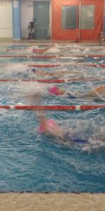 Centinaia di nuotatori di tutte l'età della Scuola Neysis di Cirò Marina per la gara di fine anno (91)
