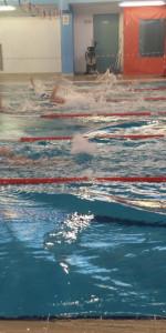 Centinaia di nuotatori di tutte l'età della Scuola Neysis di Cirò Marina per la gara di fine anno (94)