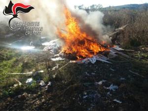 Distruggono con il fuoco rifiuti speciali a Rocca di Neto, denunciate tre persone (2)