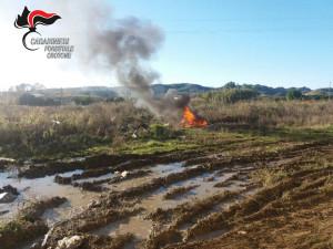 Distruggono con il fuoco rifiuti speciali a Rocca di Neto, denunciate tre persone (3)