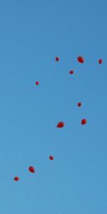 """FlashMob a Cirò Marina, Centinaia di persone hanno invaso Via Venezia danzando """"Mi fai volare"""" (35)"""