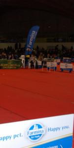 Grande successo per la VI Esposizione nazionale Canina a Cirò Marina (1)