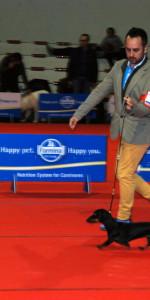 Grande successo per la VI Esposizione nazionale Canina a Cirò Marina (21)