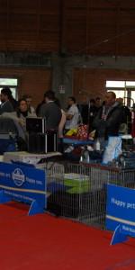 Grande successo per la VI Esposizione nazionale Canina a Cirò Marina (32)