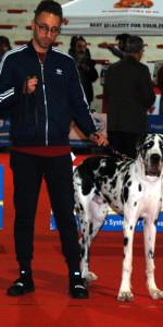 Grande successo per la VI Esposizione nazionale Canina a Cirò Marina (34)