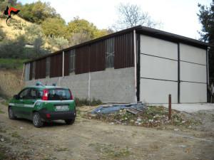 Scoperto capannone rurale abusivo a San Mauro Marchesato (1)