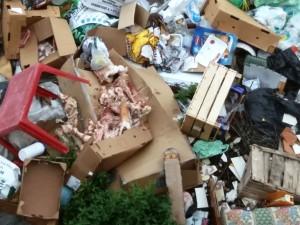 Cirò, rinvenuta Discarica abusiva di eternit, plastica, elettrodomestici, rifiuti urbani, e tanto vetro (2)