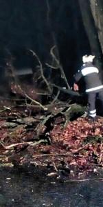 I Vigili del fuoco impegnate per tutta la scorsa notte, per numerosi interventi dovuti alle condizioni meteo (1)