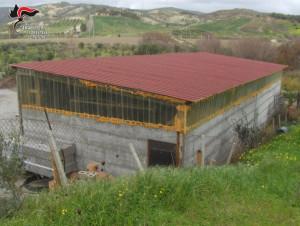Sequestrato capannone rurale abusivo a Strongoli (1)