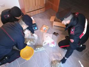 Blitz dei Carabinieri in zona Tufolo a Crotone, arrestato 29enne per possesso di 1,200 chili di droga (2)