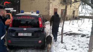 Petilia e Cotronei, due arresti ed una persona denunciata per detenzione e spaccio di sostanze stupefacenti (3)
